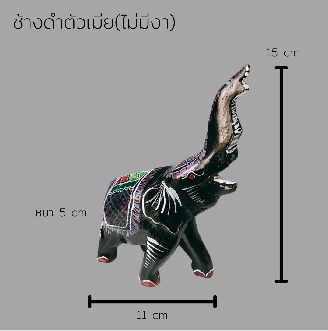 ช้างดำตัวเมีย(ไม่มีงา)